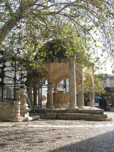 Hippokrates platan träd