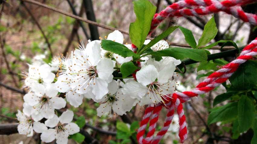 den 1 mars första månaden av våren